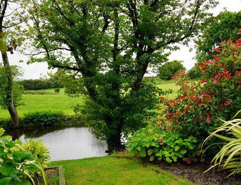 Stipa - Parcs et jardins